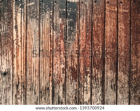 wood grungy background with space for your design #1393700924