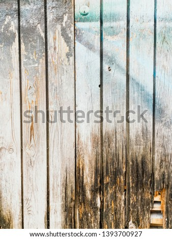 wood grungy background with space for your design #1393700927