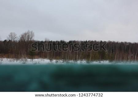 wood horizon  windder snowy forest winder nature dark weather snowed surface lake in russian forest  - Shutterstock ID 1243774732