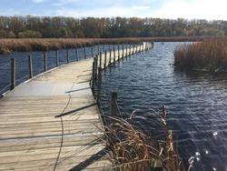Wood Lake Nature Center Boardwalk Richfield Minnesota