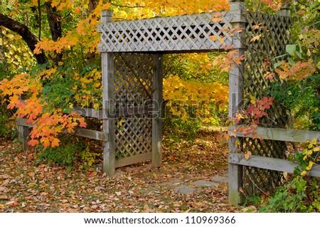Wood lattice arbor in with trees in Autumn colors