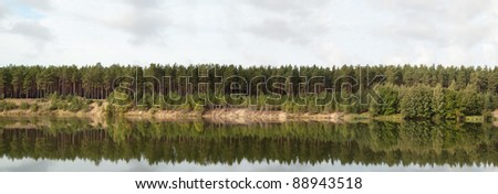 Wood on coast of lake. Reflection in water. Panorama
