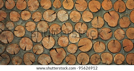 Wood on the concrete wall background