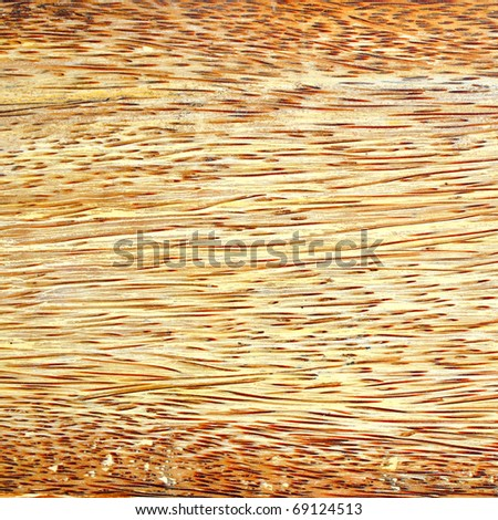 Wood Panel from Coconut Tree