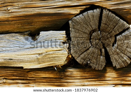 Wood pattern on wall of cabin, Great Smoky Mountains National Park, North Carolina. Stock fotó ©