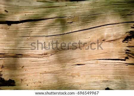 Wood pattern / Pattern #696549967