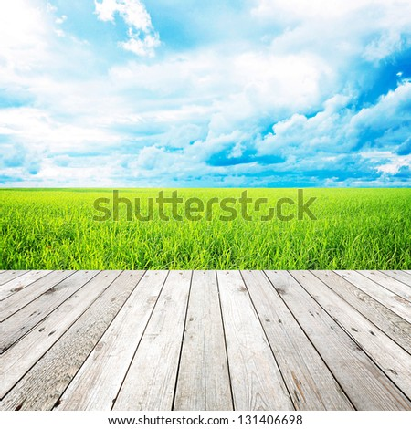 Wood plank on natural green grass field & sky background - can use for display or montage your products - stock photo