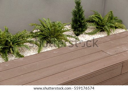 Wood Pool Terraces Floor With Green Plants #559176574