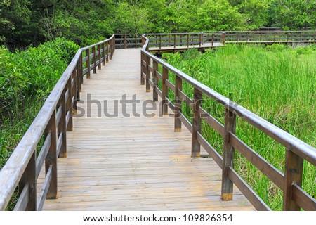 wood  railing on a summer
