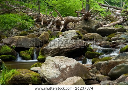 Wood river in Shenandoah national park, VA, USA