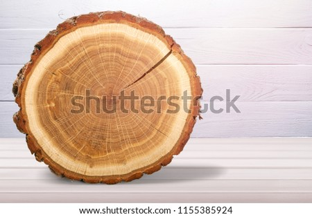 Wood round slice on desk