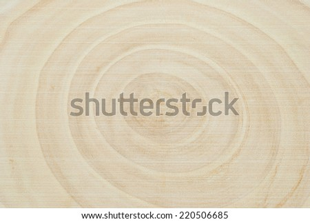 Wood section background. Section of a stump showing the age of the tree by the number of the circles