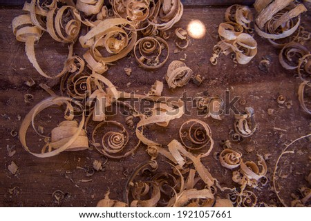 Wood shavings on the carpenter's : woodworking and carpentry concept 商業照片 ©