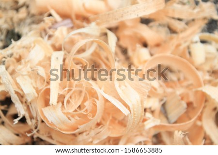 wood shavings, sawdust background, shavings