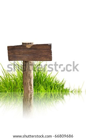 Wood sign and grass with reflection isolated on a white background.
