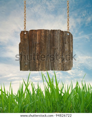 Wood sign with grass and blue sky