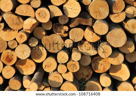 Wood stack background, closeup shot, for some nice background.