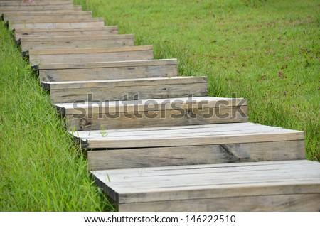 wood stair way on green garden