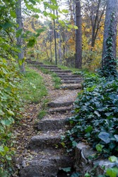 wood stairs and dry leaves in Woodland