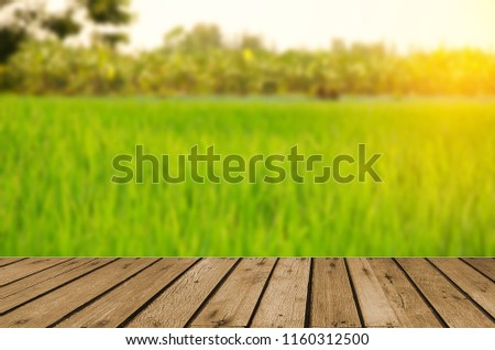wood table top and Abstract Blurred Green rice field . Can be used for display or montage your products. #1160312500