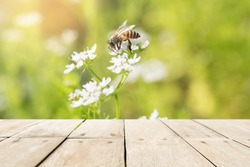 Wood table top on green grass background with bee sucking sweet nectar from flowers  - can be used for montage or display your products