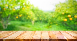 Wood table top with blur of orange garden in the morning.For montage product display or design key visual layout