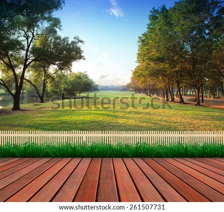 wood terrace and green grass field public park use as natural background #261507731