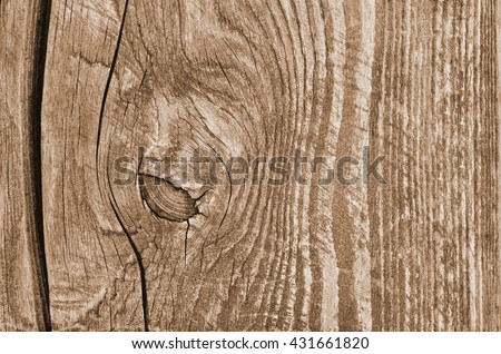 Wood texture. Lining boards wall. Wooden background pattern. Showing growth rings. #431661820