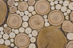 wood texture of a cut of a round tree on a cut, various caliber. Background, wall, wallpapers for desktop, blank, pattern, copy space