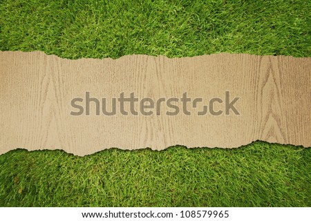 wood texture ripped on green grass background.