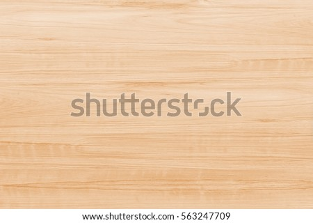 Wood texture. Wood texture for design and decoration #563247709