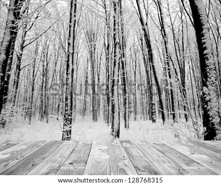 wood textured backgrounds in a room interior on the forest winter backgrounds. white and black