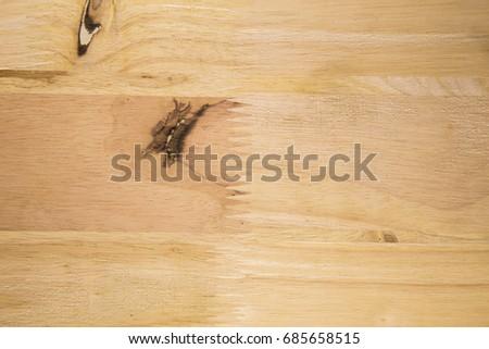 Wood textured pattern #685658515