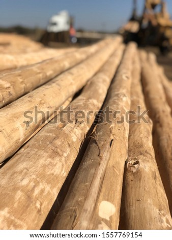 Wood Timber Poles Transmission Building Gumpole Farming