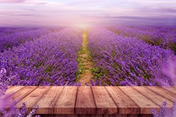 wood top table in the lavender field