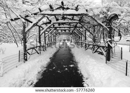 Wood Tunnel in Central Park During a Blizzard