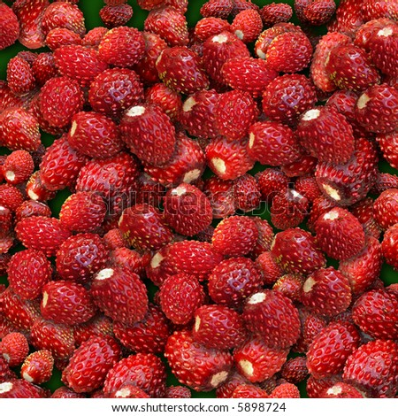 Wood wild strawberry. It is combined from several layers.