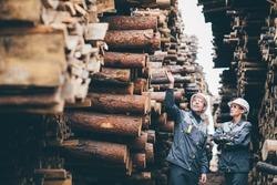 wood worker storage