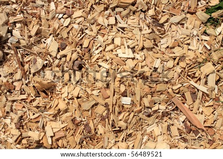 woodchips Foto stock ©