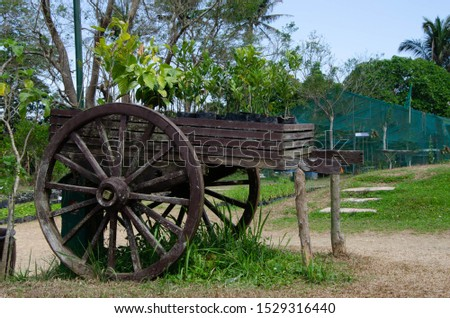 Wooded horse cart loaded with cultured plants #1529316440