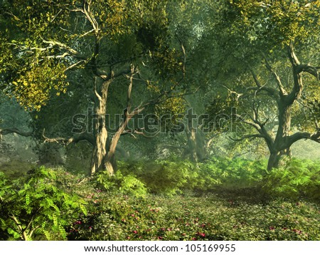 Wooded Meadow