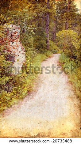 Wooded path through the woods on a grunge background.
