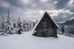 wooden abandoned cabin in winter Carpathian mountains