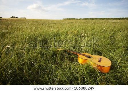 Wooden acoustic guitar lying in the foreground in a green grassy field