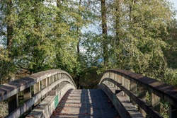 Wooden arch bridge with the cottonwood forest at the background on a sunny day with shadows, some fall colors and fallen leaves on the bridge, nice symmetrical shape.