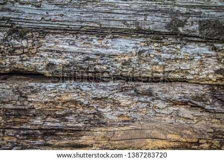 Railroad ties background Free Images and Photos - Avopix com