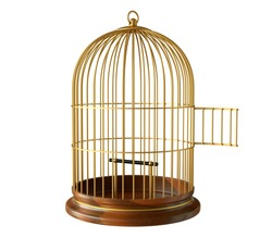 wooden base golden birdcage with open door isolated on white background