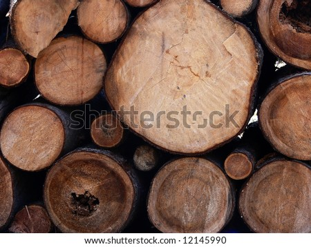 Wooden beams background - stock photo