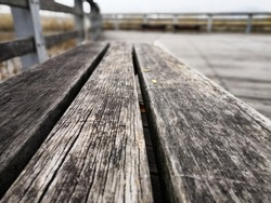 Wooden bench and a path in the park