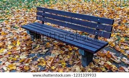 Wooden bench and colorful autumn leaves in a multi-story house courtyard.